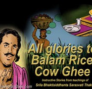 Balam Rice