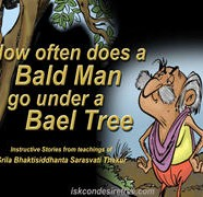 Bald Man Under Bael tree