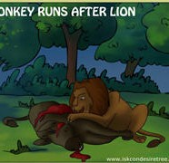 Donkey Runs After Lion