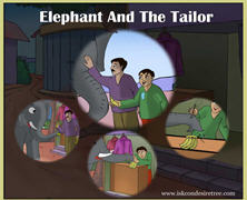 Elephant And The Tailor