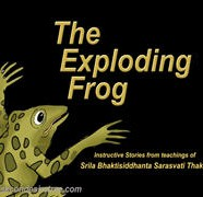 Exploding Frog-02