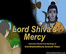 Lord Shiva's Mercy.