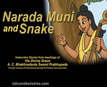 Narada And Snake