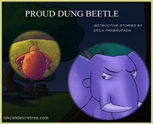 Proud Dung Beetle