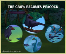 The Crow Becomes Peacock