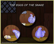 The Eggs Of The Snake