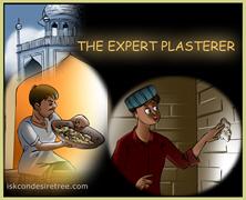 The Expert Plasterer