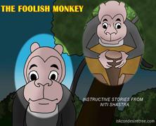 The Foolish Monkey