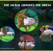 The Jackal Changes The Dress