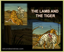 The Lamb And The Tiger