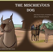 The Mischievous Dog
