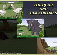 The Quail And Her Children