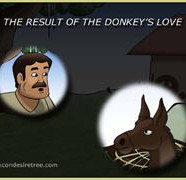 The Result Of The Donkey's Love