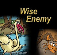 Wise Enemy