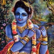 Krishnas Colours