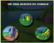 Exploding Frog-01