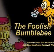 Foolish Bumble Bee
