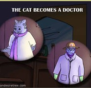 The Cat Becomes A Doctor