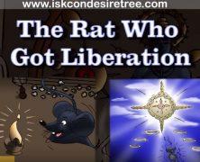 The Rat Who Got Liberation